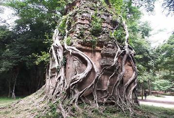 【REPF08】<(サザンブリーズカンボジア)>世界遺産 サンボープレイクック&古代橋スピアン・プラプトス(昼食・チケット・ガイド付)