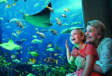 【入場チケット】アクアベンチャー(Aquaventure)☆世界最大級のウォーターテーマパーク!<ドバイ/アトランティス・ザ・パーム>