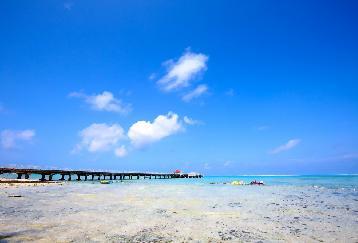 【1便目】ココス島 スーパーマリンリゾート ココス 基本コース